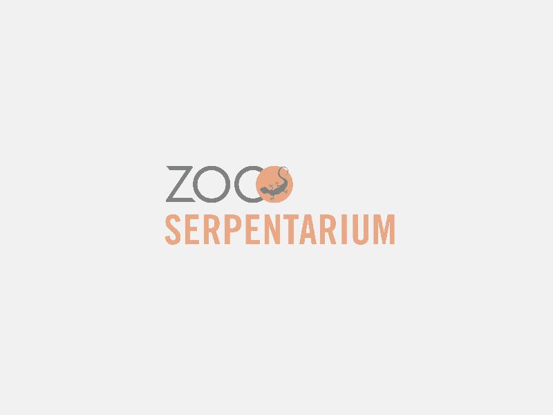 ZOO Serpentarium vangt ratelslangen op